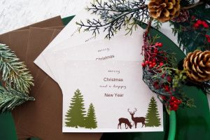 christmas cards, christmas, christmas 19, christmas card pictures, Fall leaves, family photo shoot
